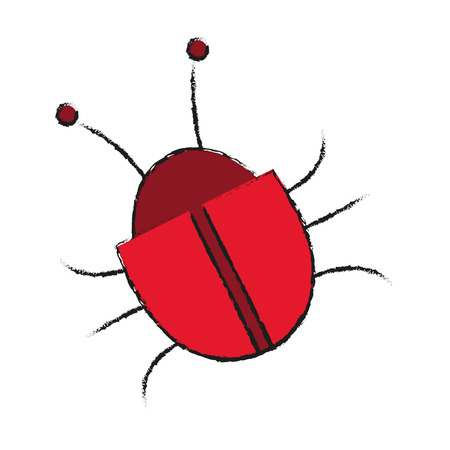 piracy: bug icon over white background. cyber security concept. vector illustration