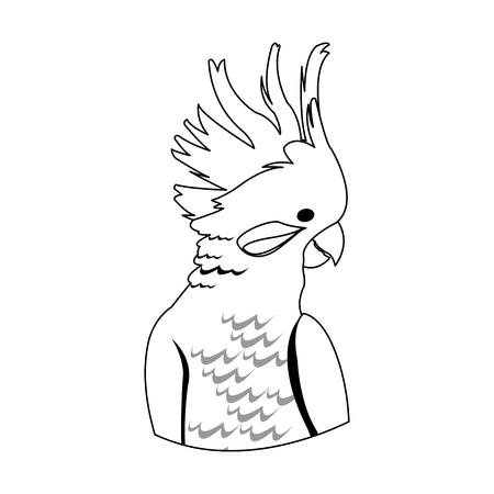 cockatoo bird icon over white background. vector illustration