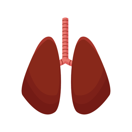 human lungs organ icon over white background. colorful design. vector illustration Illustration