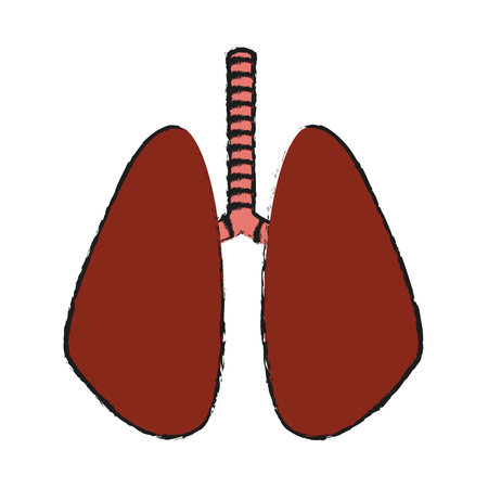 human lungs organ icon over white background. vector illustration Illustration