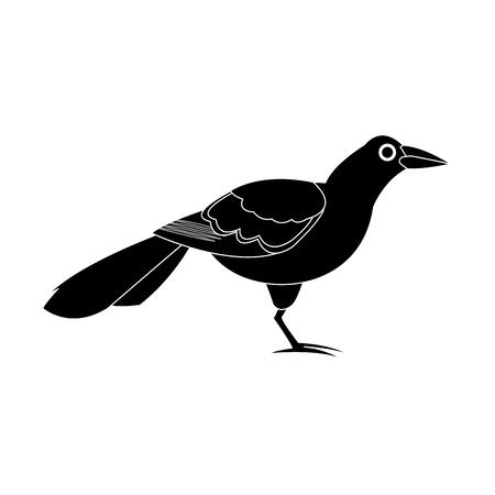reserve: exotic bird animal cartoon icon image vector illustration design Illustration