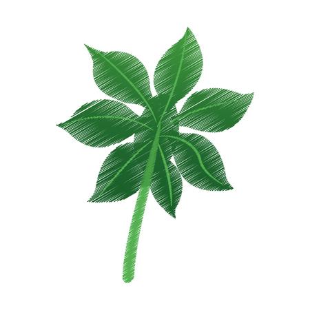 green leaf icon image vector illustration design