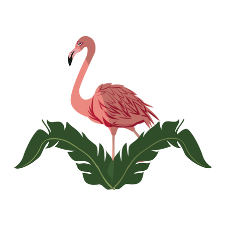 illustraiton: tropical leaves and pink flamingo bird icon over white background. colorful design. vector illustraiton