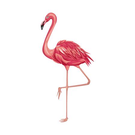 Pink flamingo bird icon over white background. colorful design. vector illustraiton Illustration
