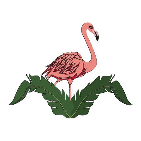 flamingo bird icon over white background. colorful design. vector illustration Illustration