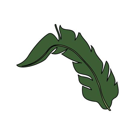 vegetate: single tropical leaf icon image vector illustration design