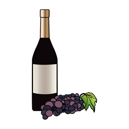 wine bottle and grapes icon image vector illustration design