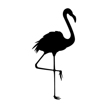 flocks: flamingo bird icon image vector illustration design