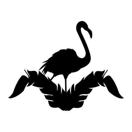 flamingo bird icon image vector illustration design