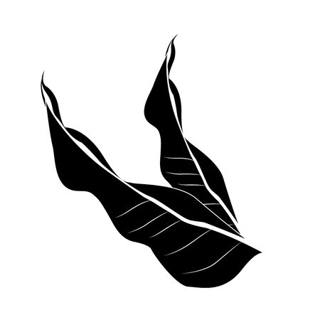 single tropical leaf icon image vector illustration design