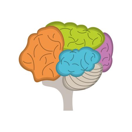 eps: brain human idea creativity vector illustration eps 10