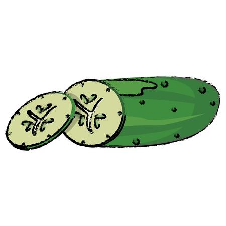 slice cucumber food diet healthy vector illsutration eps 10 Illustration