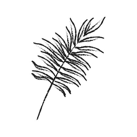 vegetate: single leaf icon image vector illustration design Illustration