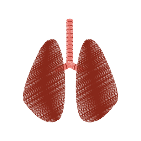 set of human lungs icon image vector illustration design  sketch style