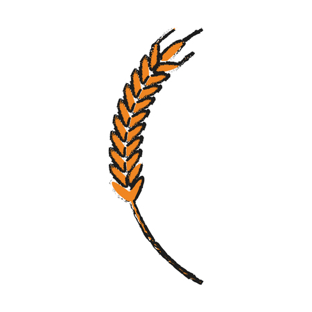 seed: wheat ear icon over white background. vector illustration