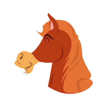 horse care: Horse cartoon icon. Animal cute adorable and creature theme. Isolated design. Vector illustration Illustration