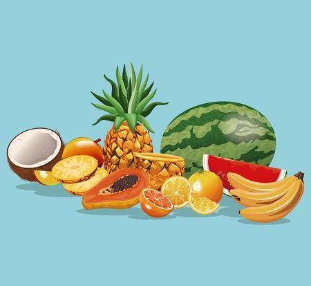 Fruits variety fresh harvest