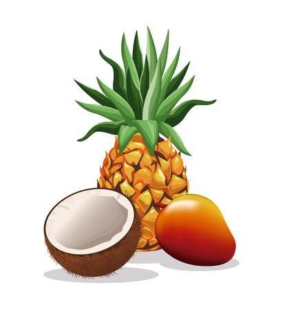Pineapple mango and coconut fruit fresh harvest