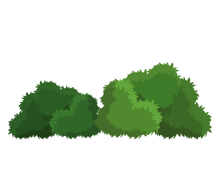 Bushes natural wild image Illustration