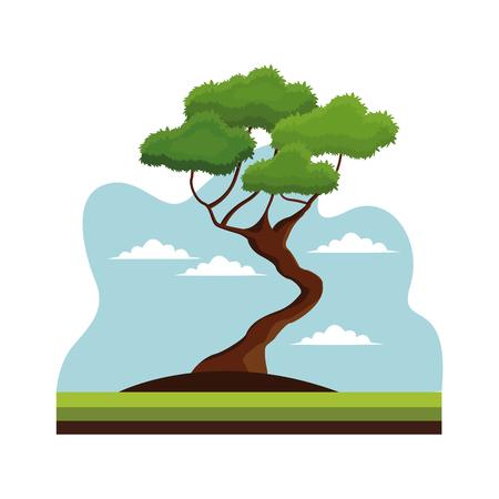 盆栽の木の自然の装飾風景ベクトル イラスト eps 10  イラスト・ベクター素材