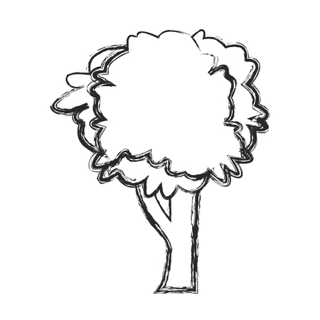foliage  natural: Tree natural foliage image sketch vector illustration