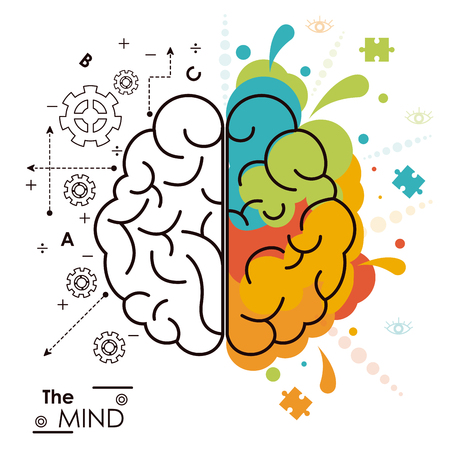 the mind brain human functions left right design vector illustration Vectores