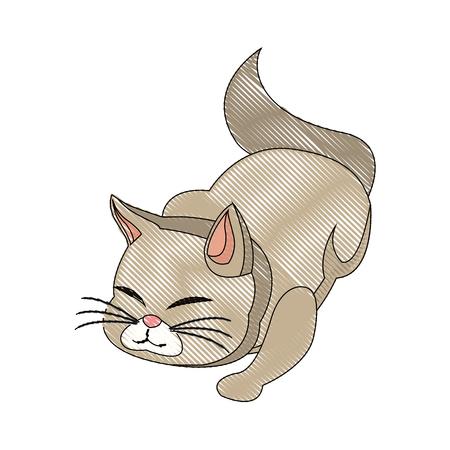 siamese: cat animal pet feline adorable draw vector illustration