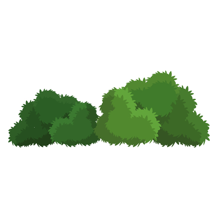 foliage  natural: bush green natural foliage image vector illustration