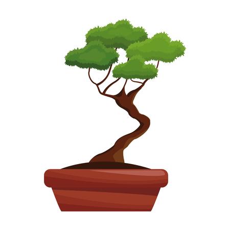 longevity: pot tree bonsay longevity botanical hobby vector illustration Illustration