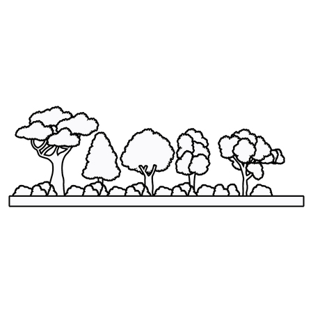 foliage  natural: collection tree forest natural foliage outline vector illustration