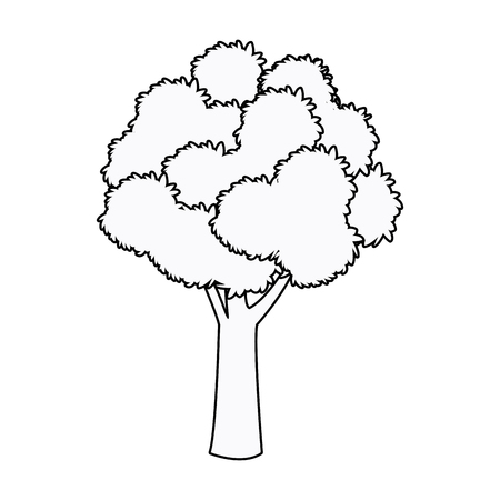tree foliage woody stem branching plant outline vector illustration