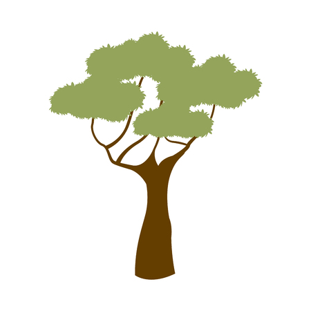green tree african natural forest flora vector illustration