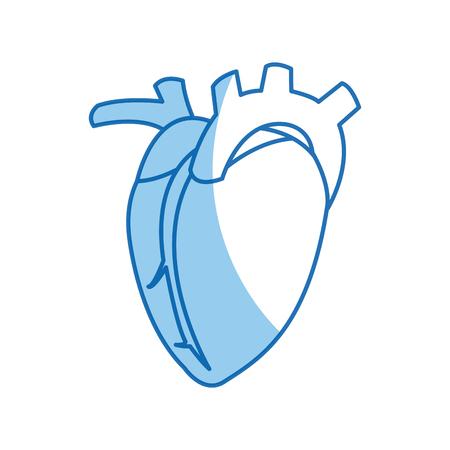 Diseño Sano Del órgano Del Corazón, Gráfico Del Ejemplo Del Vector ...