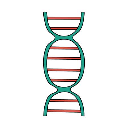 color image cartoon dna molecule vector illustration