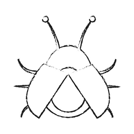 blurred silhouette image beetle virus icon with open wings vector illustration