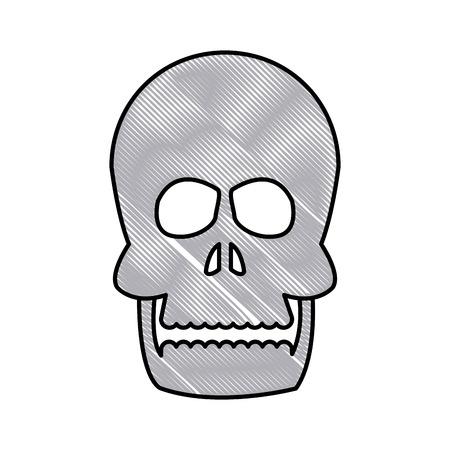 drawing human skull bone care healthy vector illustration