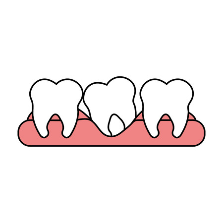 color silhouette cartoon set tooth in gum vector illustration