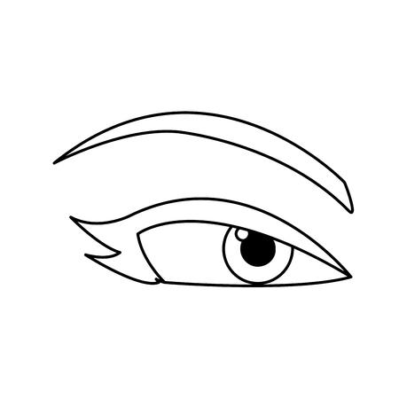 woman eye eyebrows eyelashes outline vector illustration