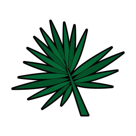 leaf or leaves icon image vector illustration design