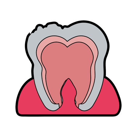 tooth interior dental care related icon image vector illustration design