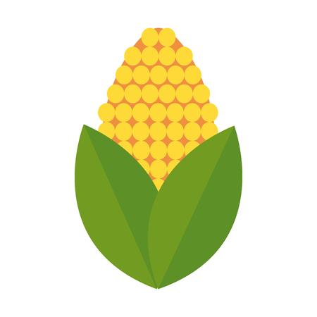 corn bioful alternative energy ethanol vector illustration Illustration