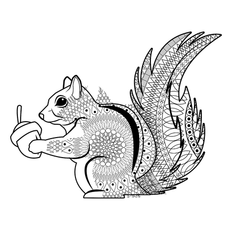 かわいいリスを食べるナット自然野生動物画像ベクトル図  イラスト・ベクター素材