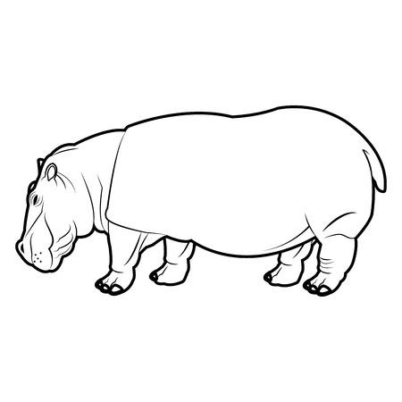 Estilo De Vida Silvestre De Hipopótamo Cabeza Natural, Ilustración ...