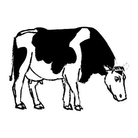 cutouts: holstein cow standing farm bovine image vector illustration Illustration
