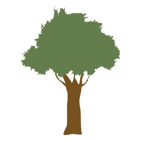 foliage  natural: tree natural forest banch foliage image vector illustration