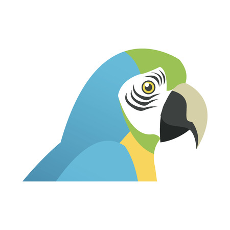 blue and yellow macaw parrot brazil vector illustration