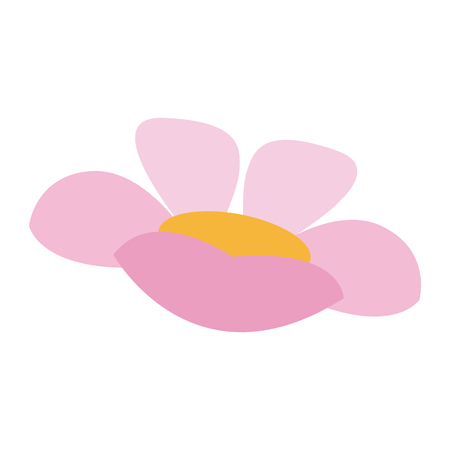 frangipani plumeria spa flower isolated on white vector illustration Illustration