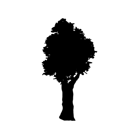 tree silhouette. branch trunk foliage image vector illustration