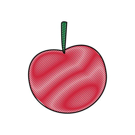 cherry with a fruit stem ripe fresh vector illustration