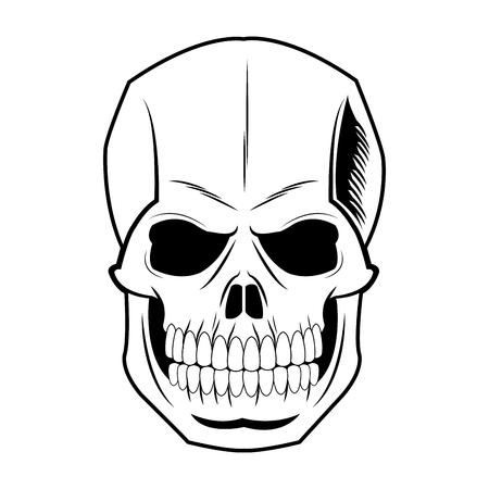 Skull human skeleton vintage pirate symbol vector illustration